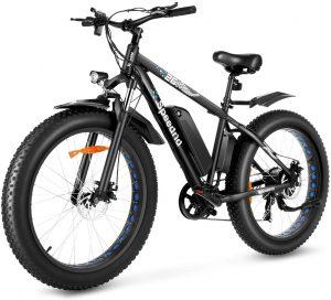 Speedrid Electric Bike Fat Tire Electric Bike