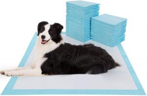 BESTLE Extra Large Pet Training and Puppy Pads Pee Pads for Dog