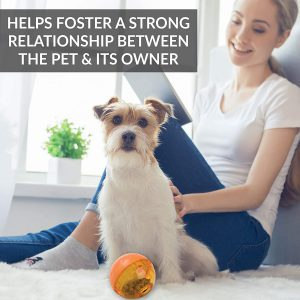 Our Pets Smarter Interactive IQ Treat Ball Dog Toy